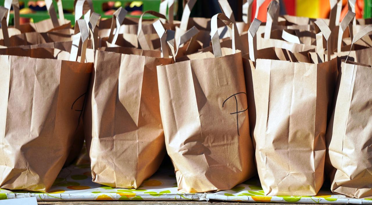 Shopping vreće - istraživanje